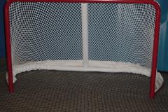 goal_1